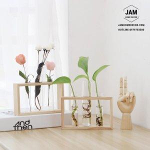 Khung gỗ ống thủy tinh cấm hoa